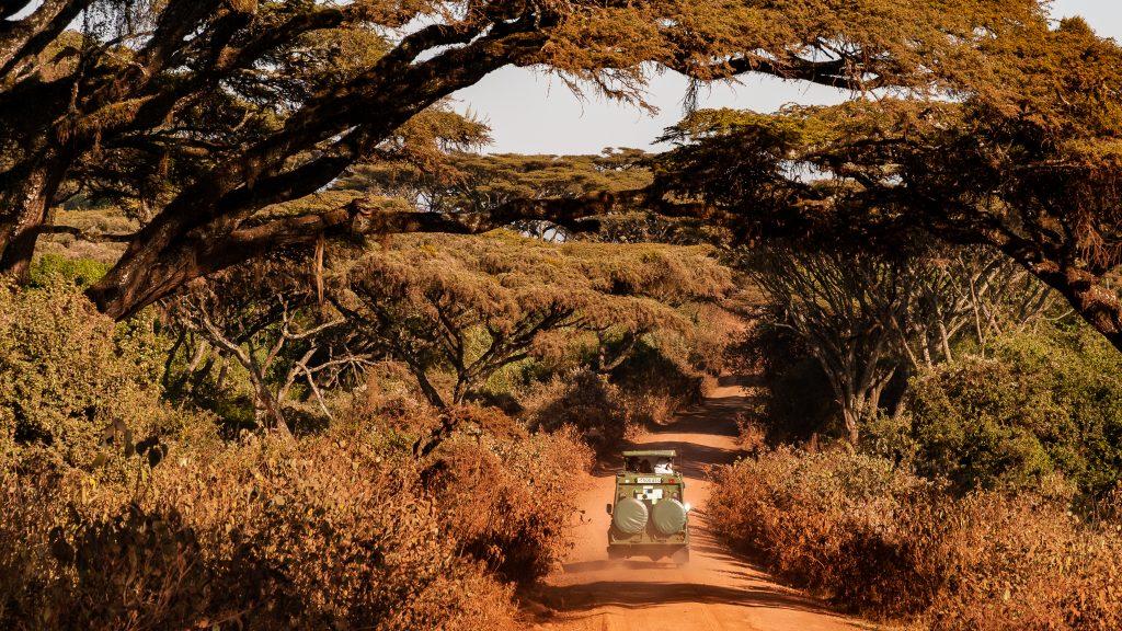 Do Afriky za zvermi, alebo výber z afrického denníka