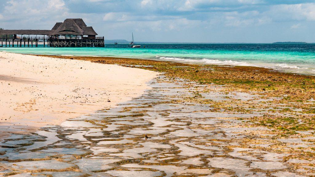 Zanzibar nie je len o Fredym Mercurym