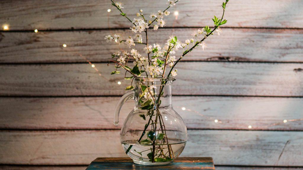 Svetlohrátky s rozkvitnutou halúzkou